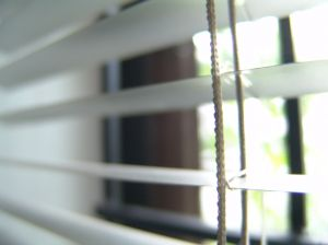 124640_silver_blinds_01